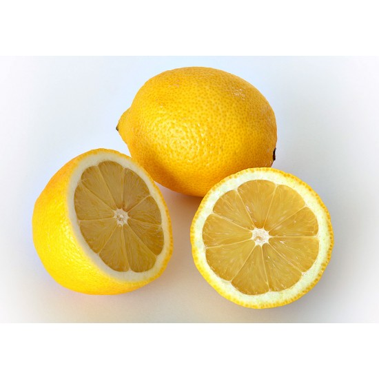 Acide citrique monohydraté USP/FCC