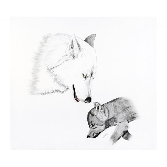 Oeuvre originale Loup arctique (Canis lupus...
