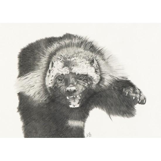 Oeuvre originale carcajou (Gulo gulo): Wolverine
