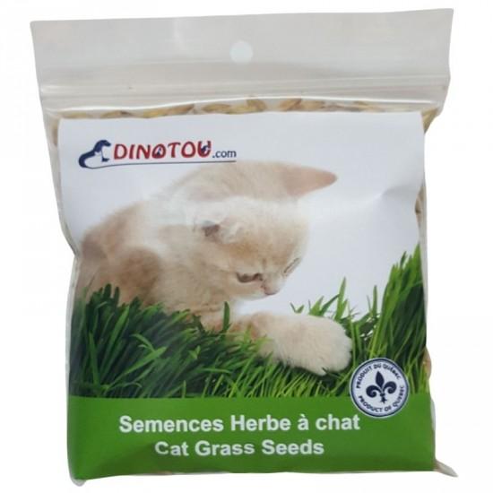 Graines à faire pousser de l'herbe digestive pour...