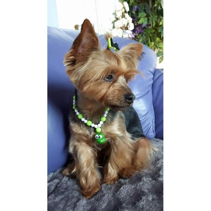 dessin de collier pour chien
