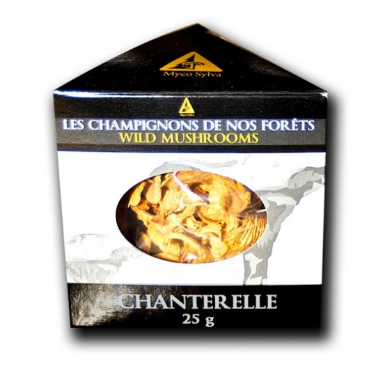 Chanterelle commune