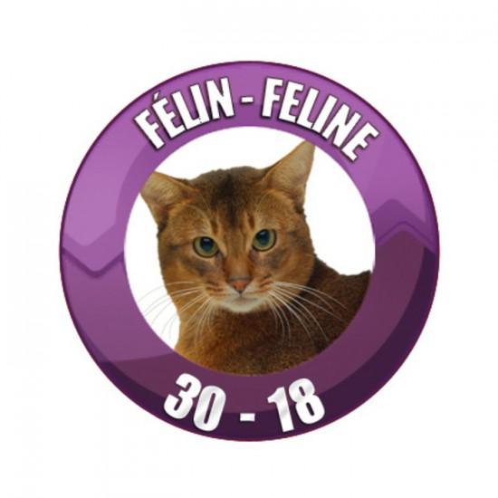 FÉLIN 4KG