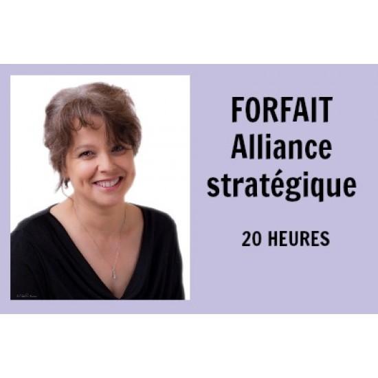 Forfait Alliance stratégique - 20 heures