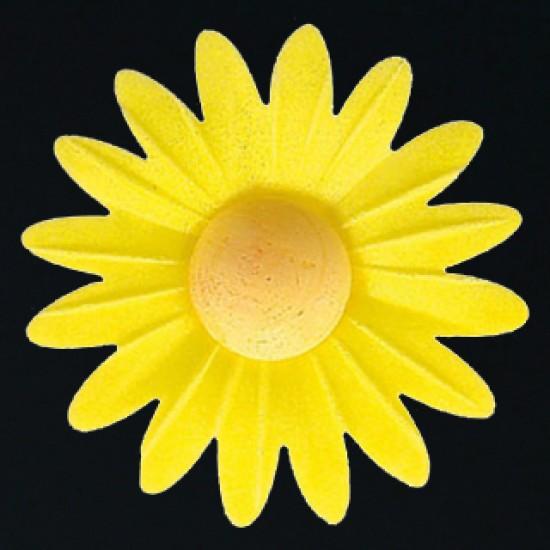 Marguerite azyme jaune